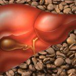 coffee & liver